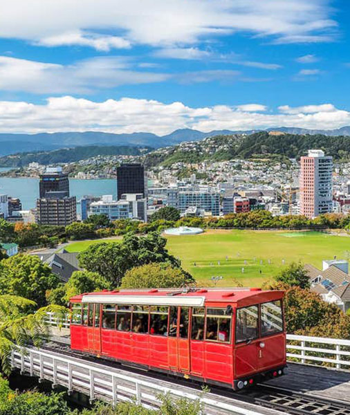 Domestic Cleaning Wellington