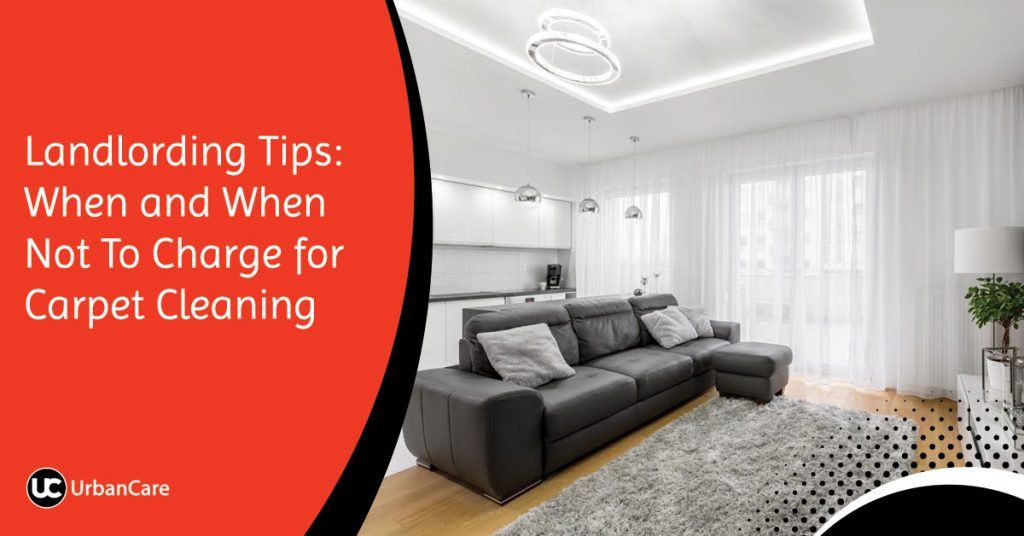 Landlording Tips: When and When Not To Charge for Carpet Cleaning